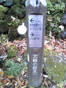 2010+11+13+14+大源太山+046_convert_20101118235633