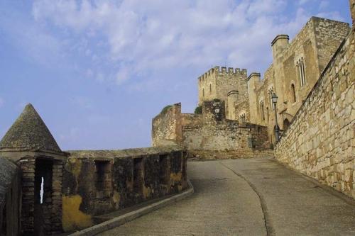 castillo_tortosa_gr.jpg