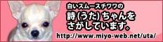 232_60_pink.jpg
