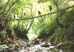 吊り橋を渡る一行