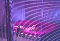 浴槽に仰向けにされている死体