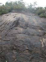 20101031南山アイトレb