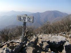 藤原岳20101121e