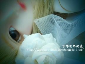 china-100912 001