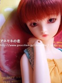 P8220006-100822a.jpg