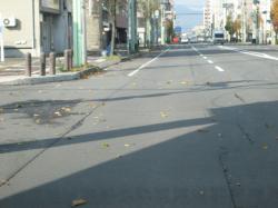 道には落ち葉が舞っています