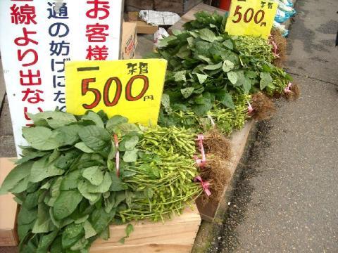 かどや・H22・7 枝豆