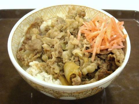 すき家・H22・8 牛丼(並)