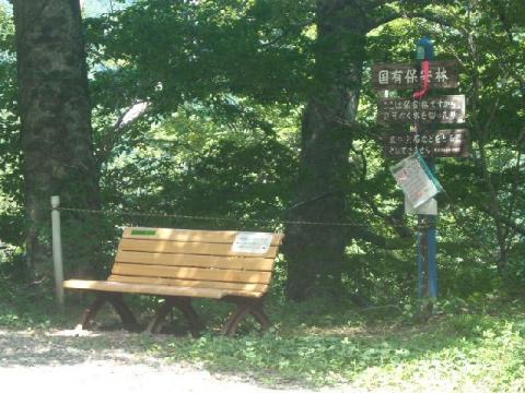谷川岳一ノ倉沢12