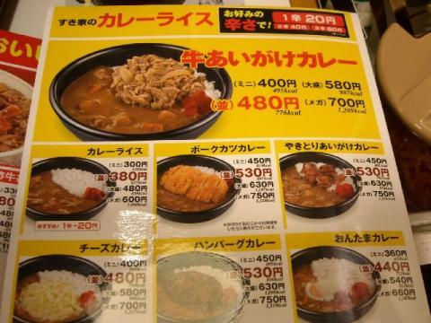 すき家三条東裏館店・H22・11 カレーメニュー