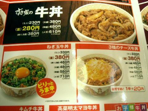 すき家三条東裏館店・H22・11 牛丼メニュー