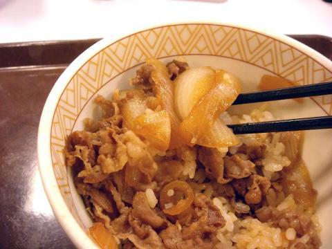 すき家・H22・12 牛丼 玉ネギ