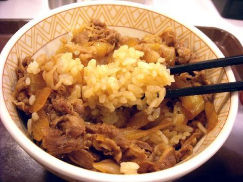 すき家・H22・12 牛丼 ご飯