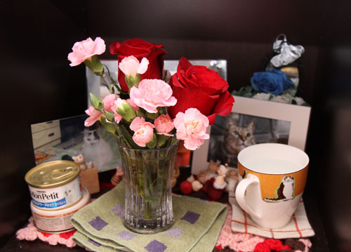 お花を飾ってみた