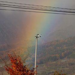 P1000256虹