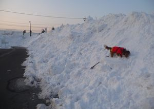 P1010076スーパー雪山
