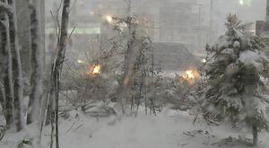 ショコラ雪