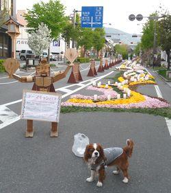 P1000408花キャンバス6