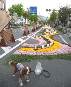 P1000409花キャンバス8
