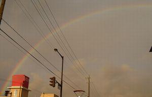 P1020480虹
