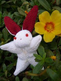 P1020618ウサギ