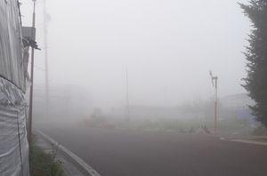 P1020967朝霧