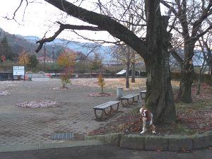 P1030272公園1