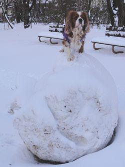画像 004雪だるま1