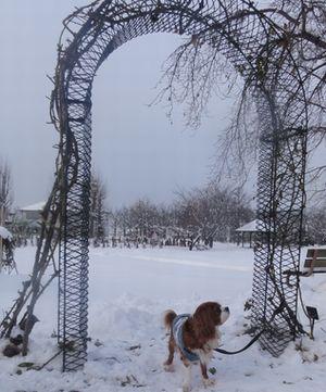 画像 008公園2