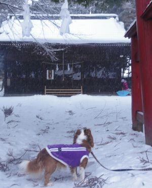 画像 006神社1
