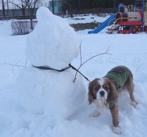 画像 009雪だるま