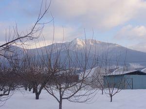 画像 008山