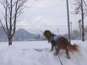画像 005雪山1