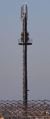 画像 013塔1