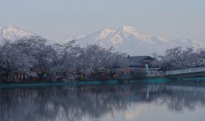 画像 054桜と戸隠
