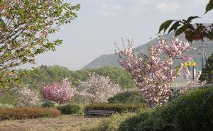 画像 066公園