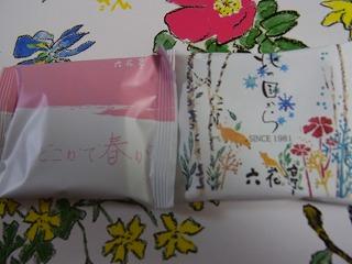 shukusho-RIMG0022.jpg