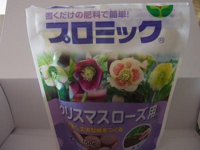 shukusho-RIMG0034.jpg
