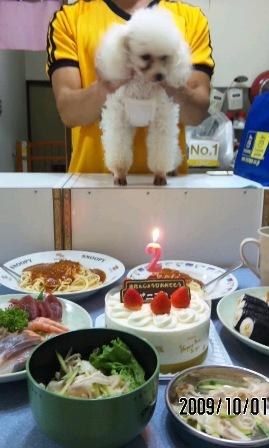 バニラとケーキ