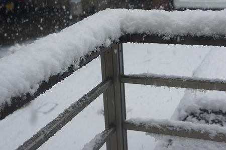 雪 003