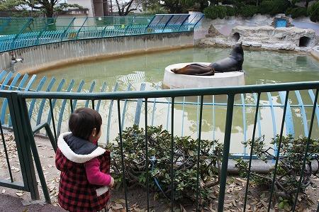 動物園 001