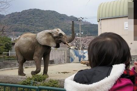 動物園 004