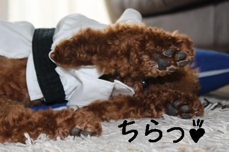 じしゅれん6
