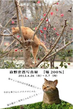 森野猫200%写真展