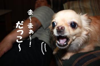 IMG_4414.jpg