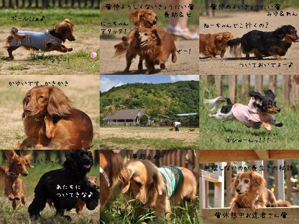 091012 blog4