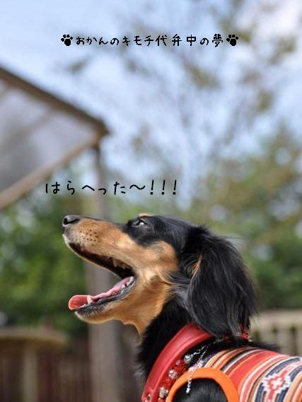 091012 blog6