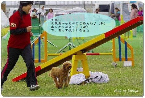 20110501084746_IGP2424.jpg