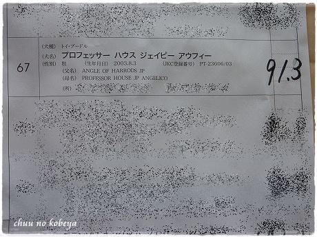 P1180109.jpg