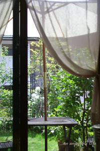 niwa201108.jpg